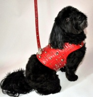 The Chelsea Leash<br />Vest and leash sold separately