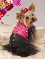 Hot Pink Heavy Metal Harness<br />