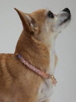 Peach Crystal Cascade Necklace<!--Dogs-->&lt;br /&gt;