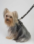 Spike Black Harness