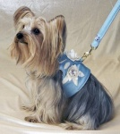 Bluebell Leash