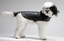 Black Aviator Coat