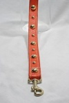 Tangerine Golden Grid Leash