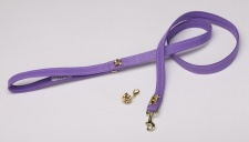 Golden Crocus Leash