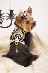 Baroque Brocade Harness